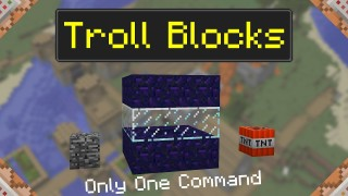 Minecraft: Troll Block Only One Command