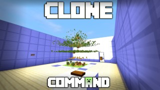 Minecraft: Clone Items Only One Command