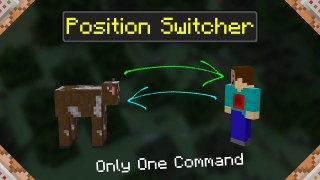 Minecraft: Position Switcher Only One Command