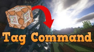 Minecraft: Tag Only One Command
