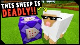 Minecraft: 10 Cool One Command Block Only One Commands